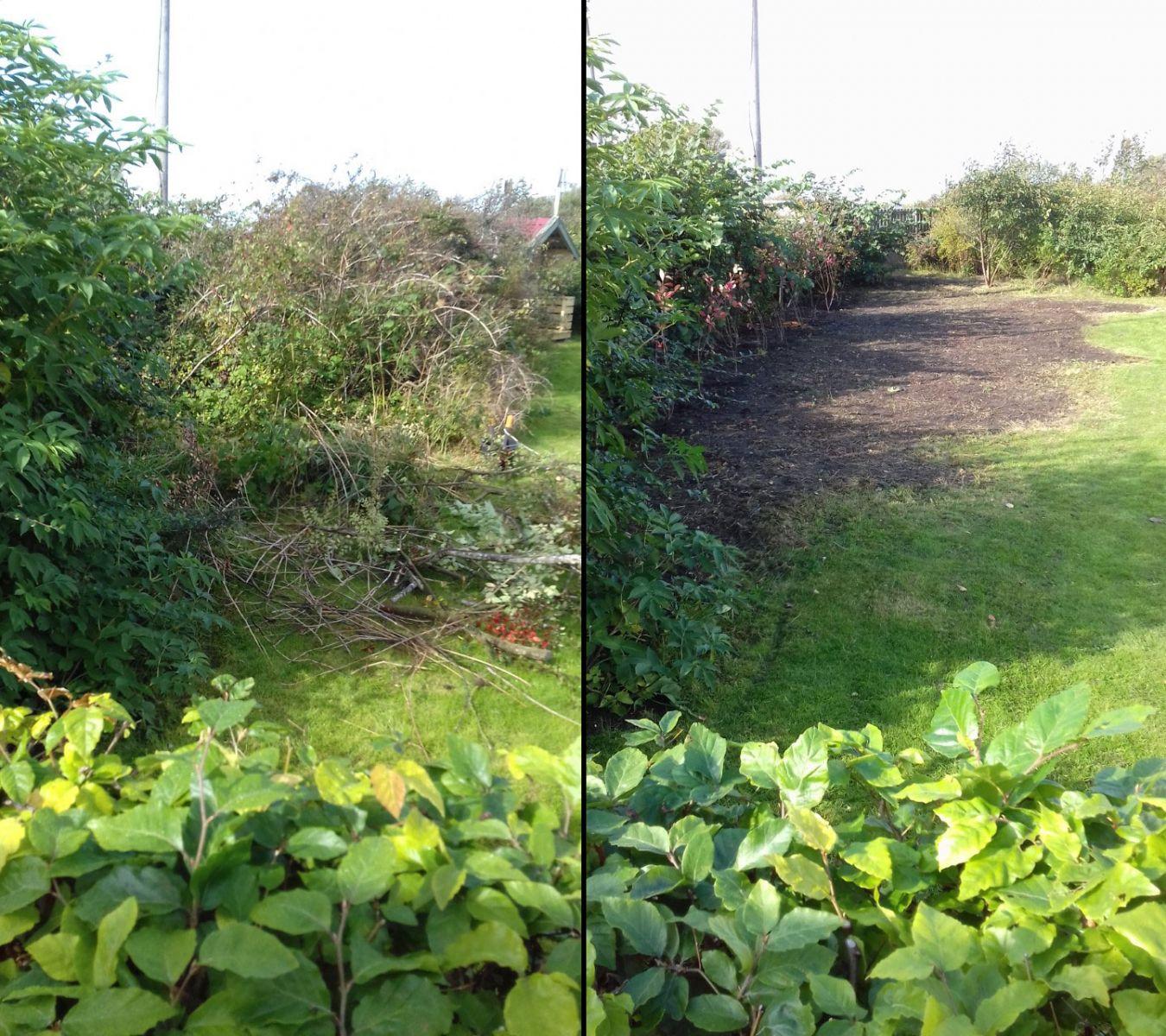 En rejäl städning på höst och vår gör din trädgård frisk, vacker och inbjudande.