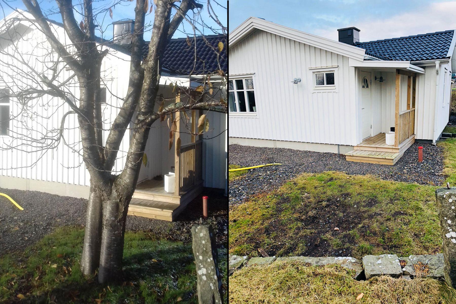 Vi hjälper dig med stubbfräsning, trädfällning och bortforsling av grenar.